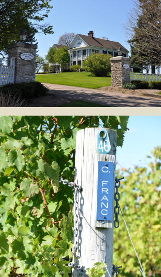 White Birch Vineyards - Our Vision
